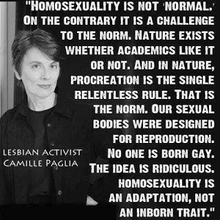 Camille Paglia-Homosexual Activist