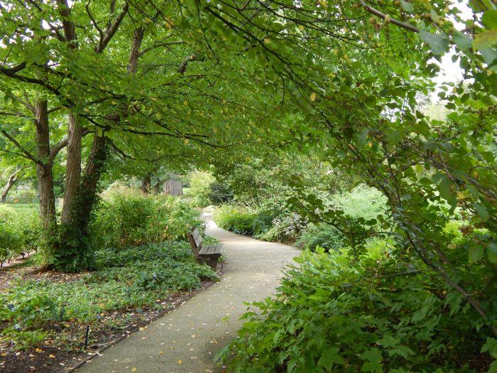"""""""Walk to Paradise Garden"""""""