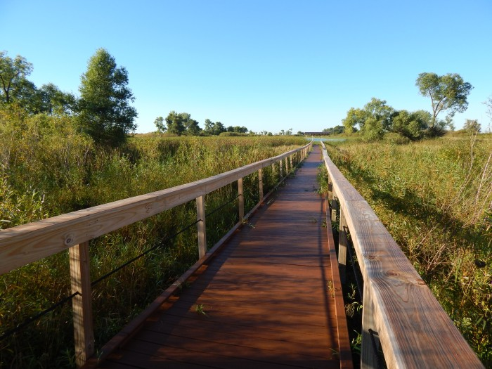 To Horicon Marsh Lookout